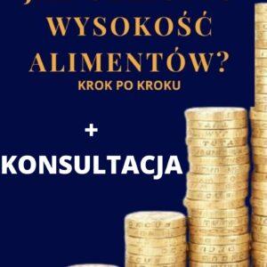 E-book ALIMENTY KROK PO KROKU + 30 min. konsultacji z adwokatem